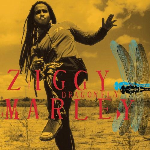 Dragonfly by Ziggy Marley