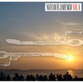 Nuevo Flamenco Vol I by Various Artists