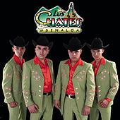 Tu Sancho Consentido by Los Cuates De Sinaloa