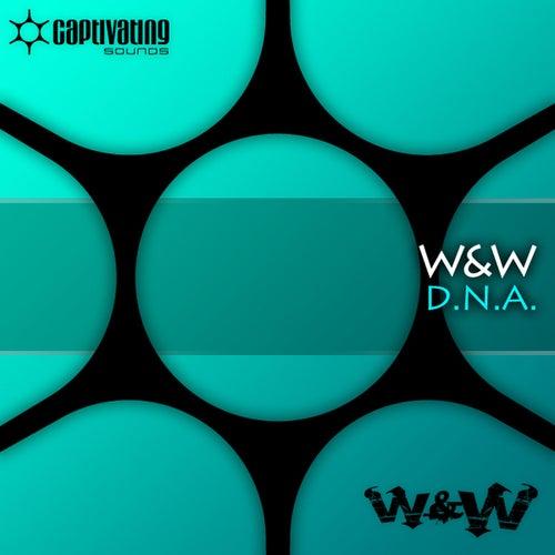 D.N.A. by W&W