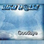 Goodbye by Niko Noise