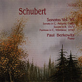 Schubert: Sonatas, Vol. VII by Paul Berkowitz