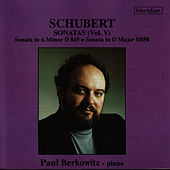 Schubert: Sonatas, Vol. V by Paul Berkowitz