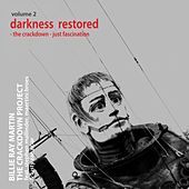 The Crackdown Project, Vol.2 (Darkness Restored: The Crackdown / Just Fascination) [feat. Lusty Zanzibar, Stephen Mallinder & Maertini Broes] by Billie Ray Martin