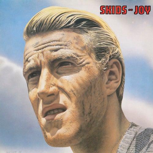 Joy (Plus Bonus Tracks) by The Skids