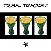 Tribal Tracks, Vol. 1 by Various Artists