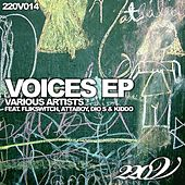 Voices EP by Various Artists