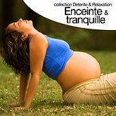 Enceinte et tranquille (Collection détente et relaxation) by Relaxation  Big Band