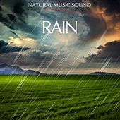 Natural Music Sound : The Rain by Various Artists