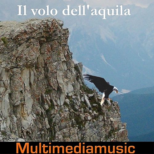 Il volo dell'aquila by Various Artists