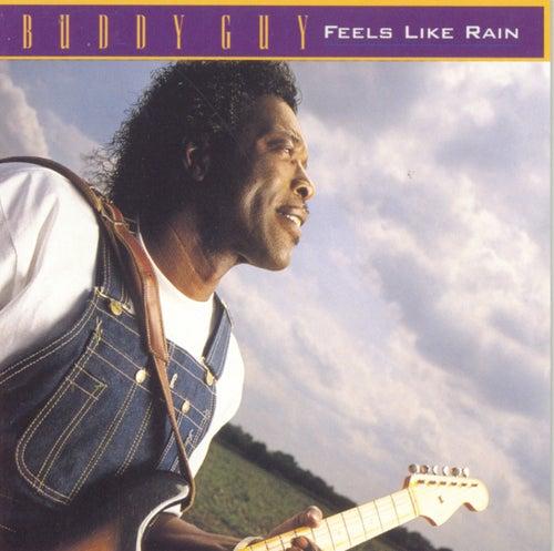 Feels Like Rain by Buddy Guy