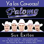 Ya los Conoces by Palomo