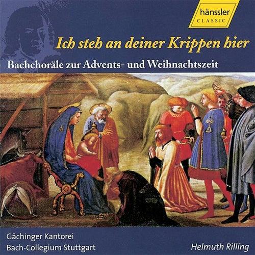 Bach, J.S.: Ich steh an deiner Krippen hier by Gerhard Gnann