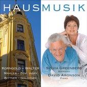 Greenberg, Sylvia: Hausmusik by Sylvia Greenberg