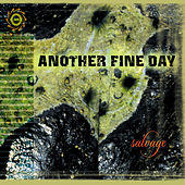Salvage by Another Fine Day