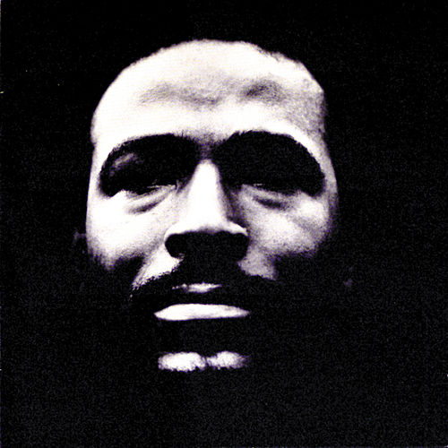 Vulnerable by Marvin Gaye