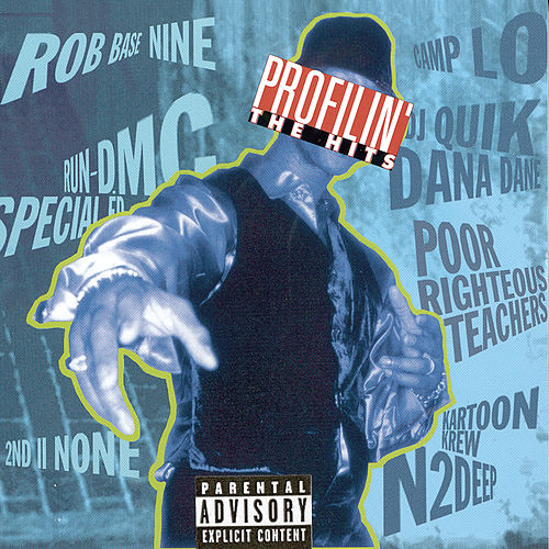 Profilin' The Hits by Various Artists