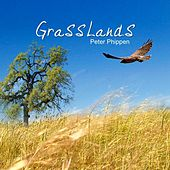 Grasslands by Peter Phippen