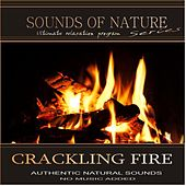 Crackling Fire (Sounds of Nature) by Relaxing Sounds of Nature