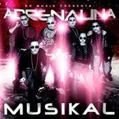 Adrenalina Musikal by Various Artists