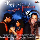 Kaisa Yeh Junoon by Various Artists