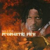 Prophetic Fire by Mr. Lynx