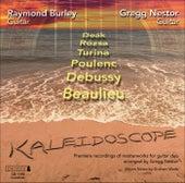 Kaleidoscope by Gregg Nestor