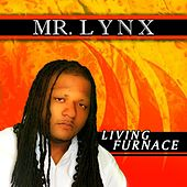 Living Furnace by Mr. Lynx