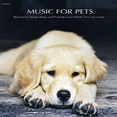 Music for Pets - Relaxation Songs Dogs and Friends Love While You Are Gone by Music for Pets Specialists