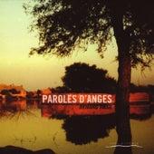 Paroles D'anges by Armand Amar