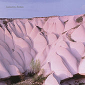 Amber by Autechre