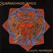 Delicate Membrane by SubArachnoid Space