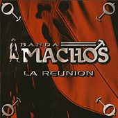 La Reunion by Banda Machos