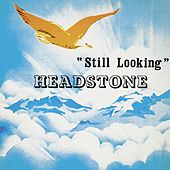 Still Looking by Headstone