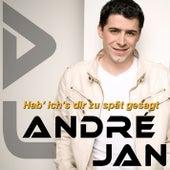 Hab ich's dir zu spät gesagt by André Jan