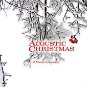 Acoustic Christmas by Performance Artist