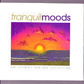 Pure Moods: The Ultimate New Age Collection by Various Artists