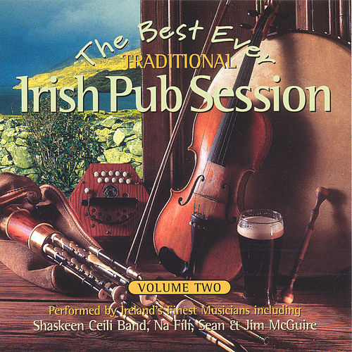The Best Ever Traditional Irish Pub Session - Volume 2 by Various Artists