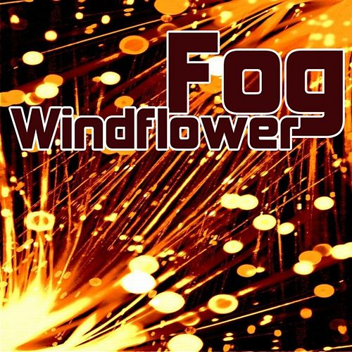 Windflower by Fog
