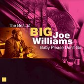 Baby Please Don't Go (The Best of) by Big Joe Williams