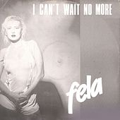 I Can't Wait No More by Fela