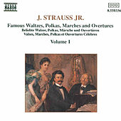 The Best of Johann Strauss Jr. Vol. 1 by Johann Strauss, Jr.