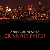 Grandes Exitos by Andy Montañez