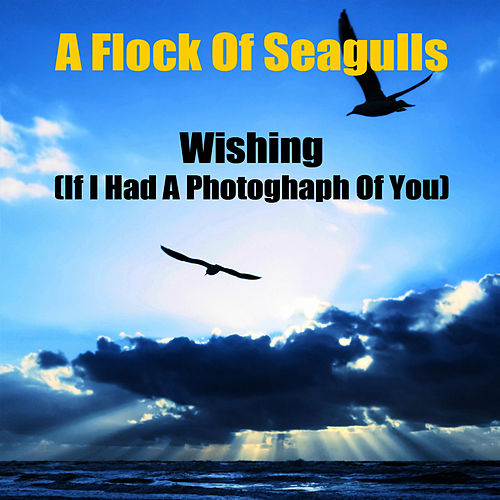 Wishing (If I Had A Photograph Of You) (Re-Recorded / Remastered) by A Flock of Seagulls