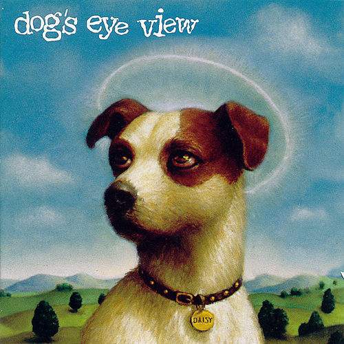 Daisy by Dog's Eye View