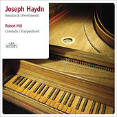 Haydn: Sonatas and Divertimenti by Robert Hill