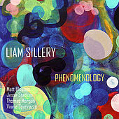 Phenomenology by Liam Sillery