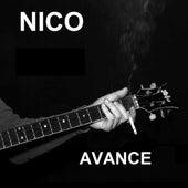 Avance by Nico