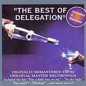 The Best of Delegation by Delegation