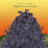 Needle In A Slunk Stack by Buckethead